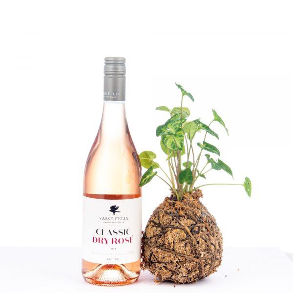Kokedama and Wine Gift Bag