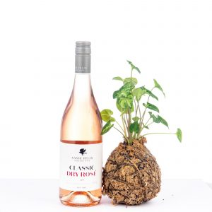 Plant Gift Hamper, Wine Gift Hamper